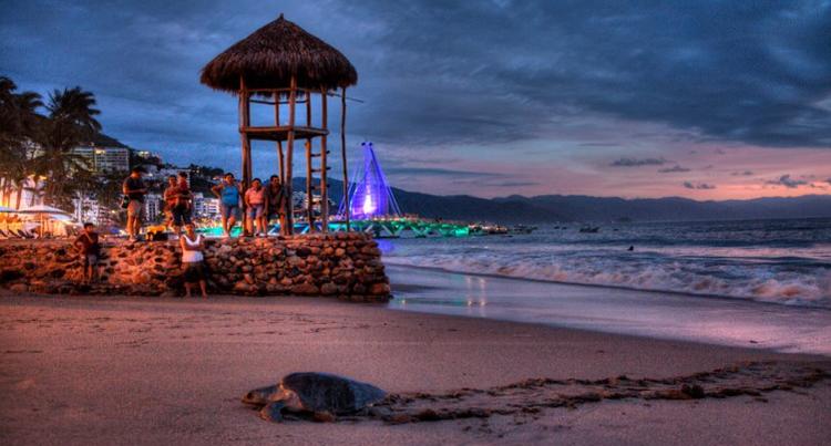 Tortuga on Los Muertos Beach